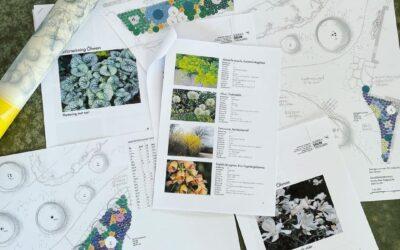 Handritad trädgårdsskiss och planteringsritningar